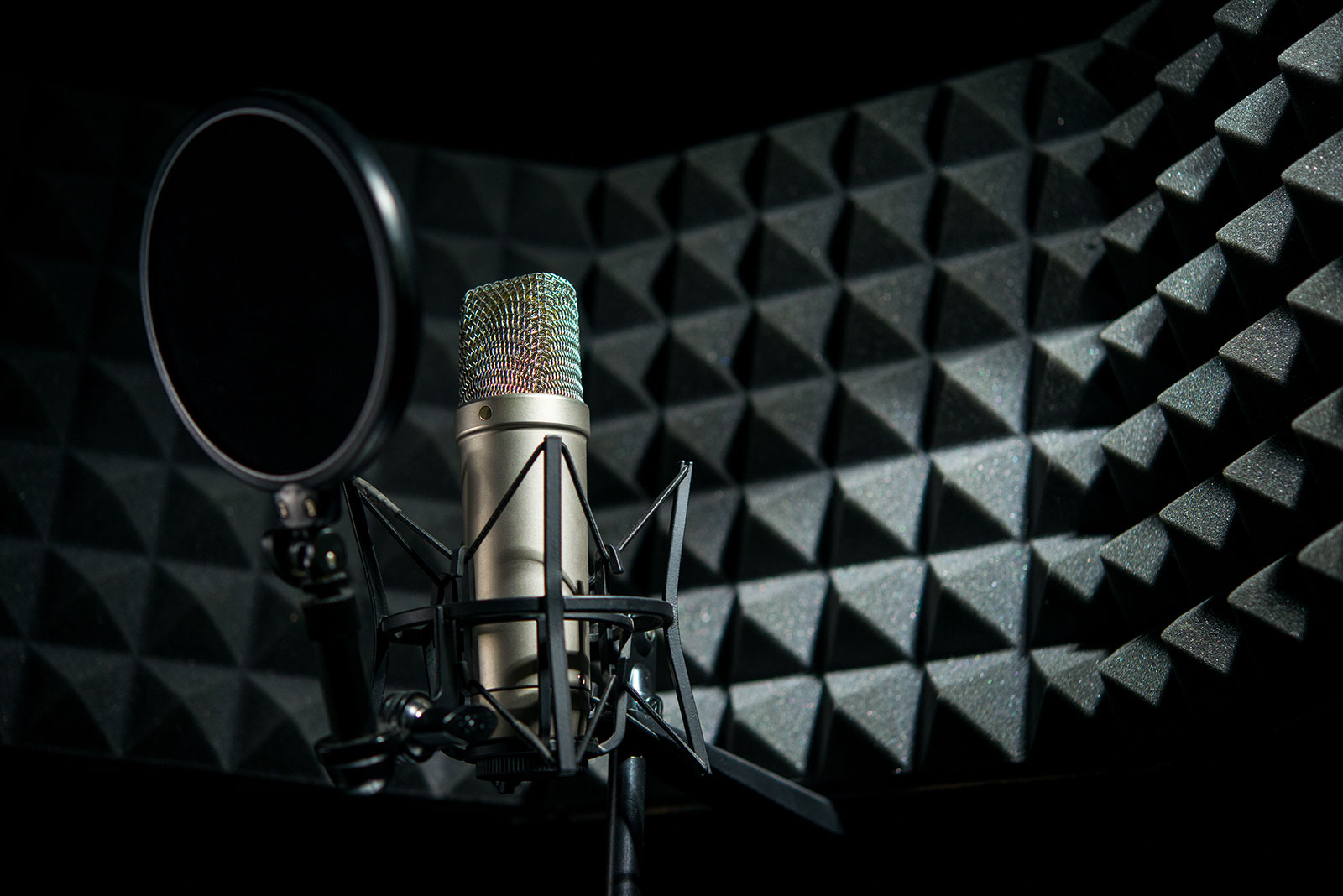 The 15 Best Microphones For Vocals in 2021